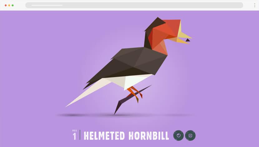 Species in Pieces 3D illustrations