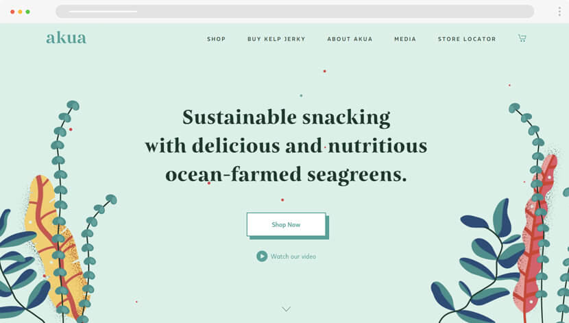 Akua website with creative illustration style