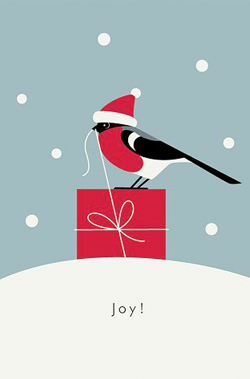 bird-and-a-christmas-gift