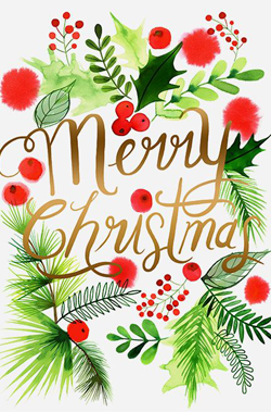 merry-christmas-illustrated-card
