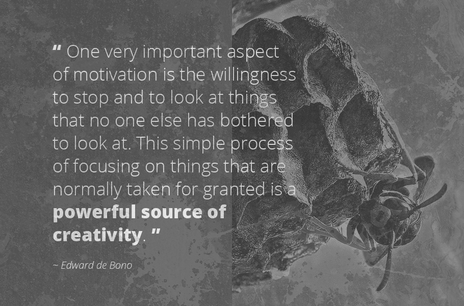 """""""One very important aspect of motivation is the willingness to stop and to look at things that no one else has bothered to look at. This simple process of focusing on things that are normally taken for granted is a powerful source of creativity."""", Edward de Bono"""