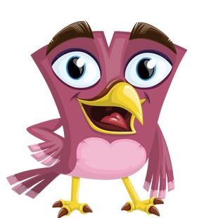 attractive-pink-bird
