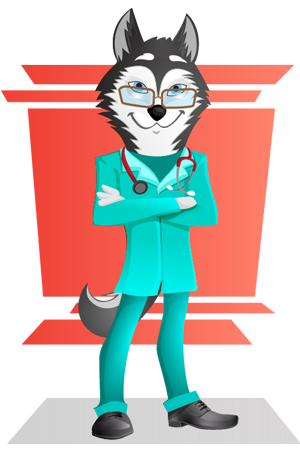 husky-dog-doctor-vector-character