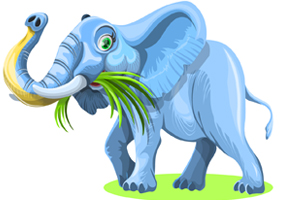 elephant-chewing-grass