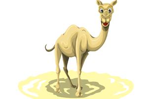 vector-camel