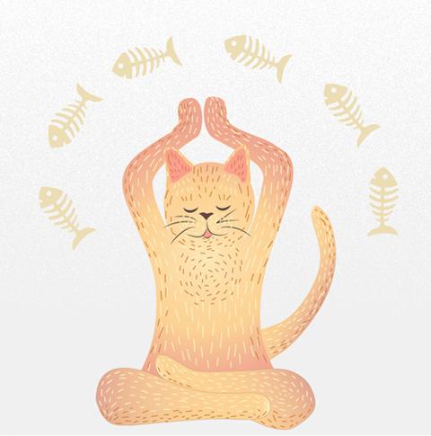 cat-doing-yoga