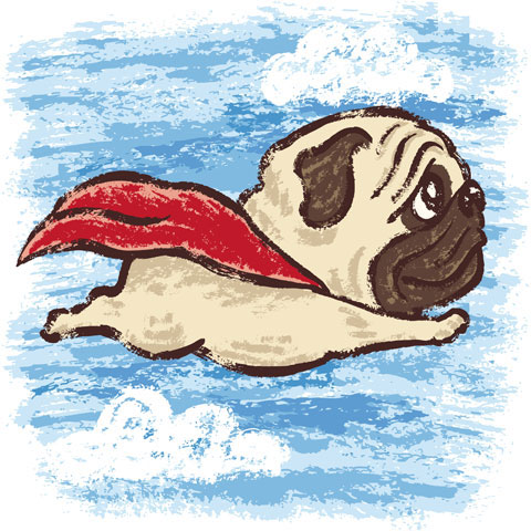 Super Pug dog illustration