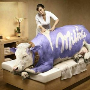 mascots in advertising milka cow charactter
