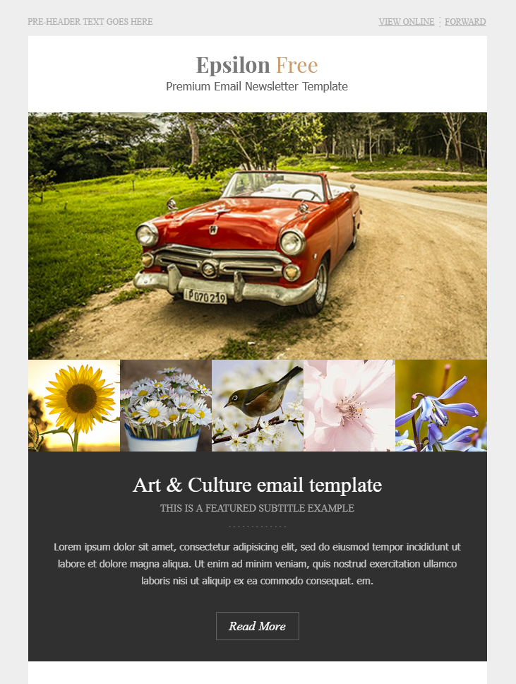 art and culture free html email template