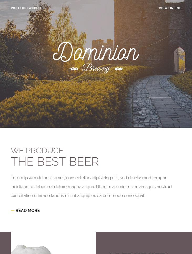 dominion free html email template
