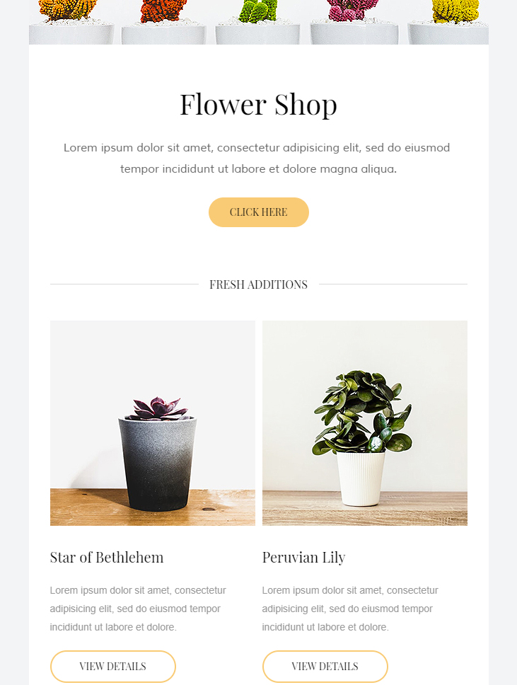 clean html email template free download