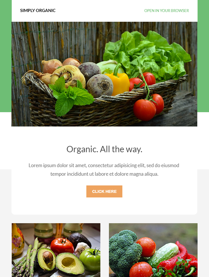 green html email template free download