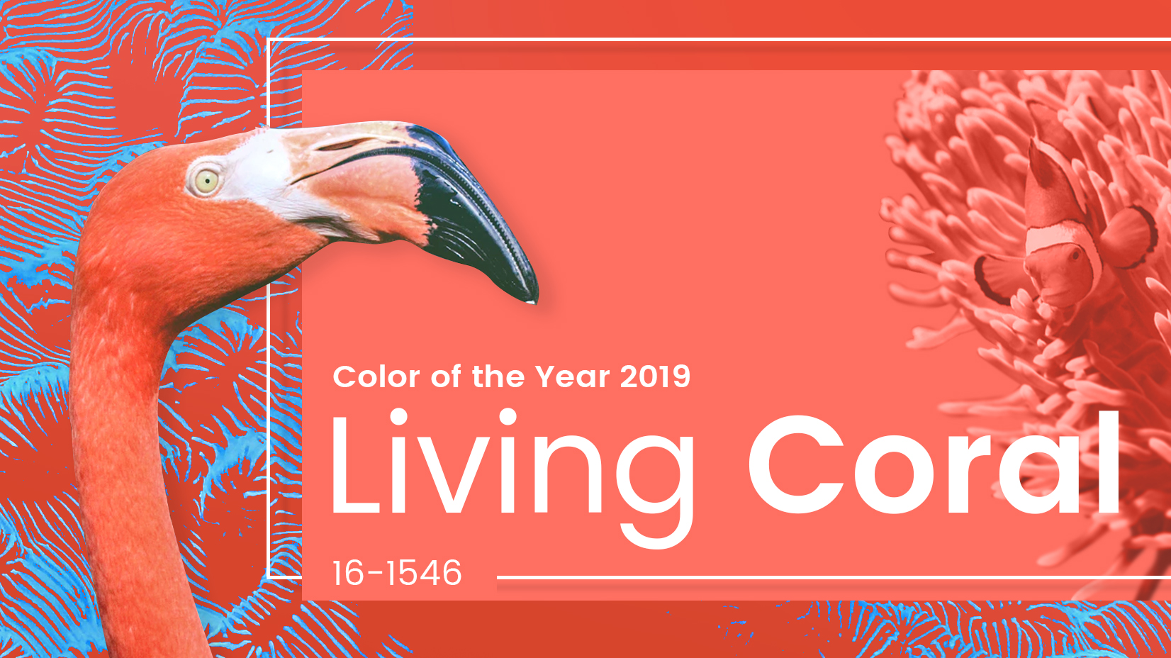 'Living Coral' is Pantone Color of The Year 2019