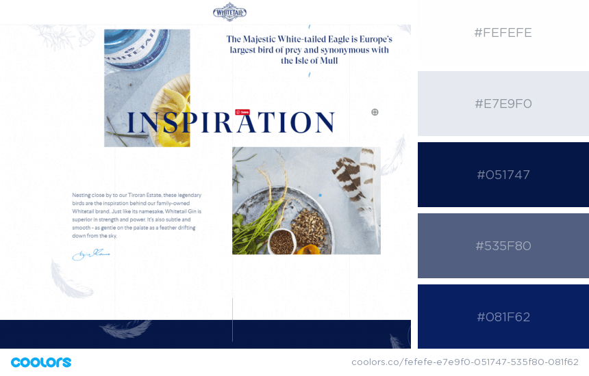 Inspiring Website Color Schemes business colors website