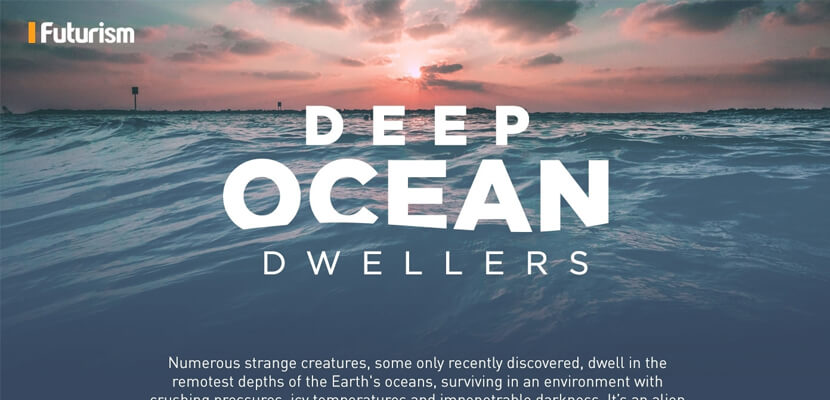 The best infographic designs in 2019 - Deep Ocean Dwellers