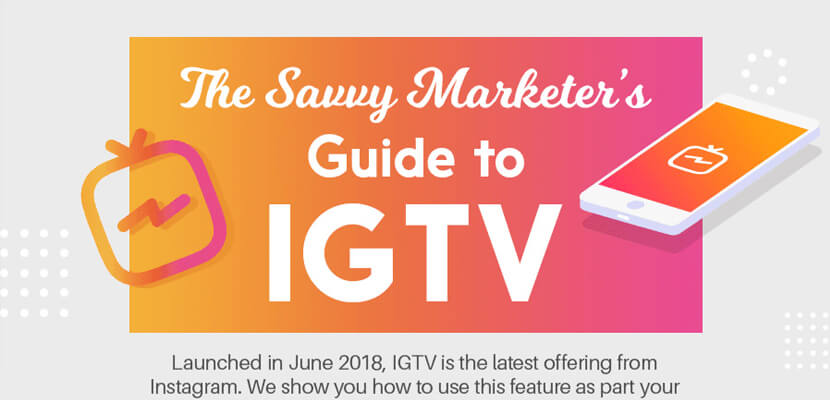 The best infographic designs in 2019 - The Savvy Marketers Guide to IGTV