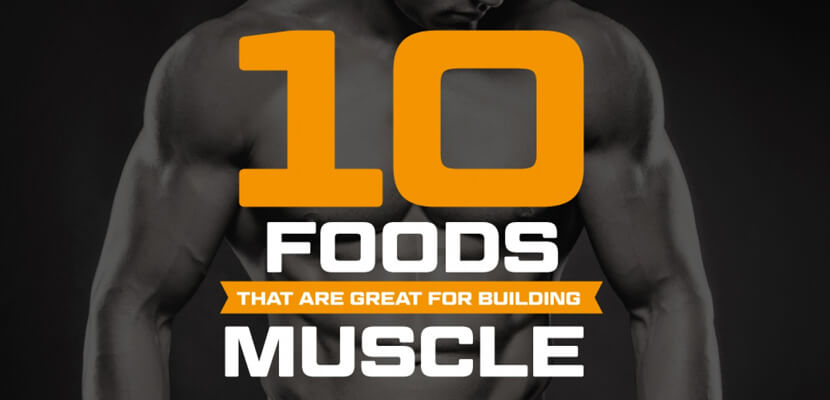 the-best-infographic-designs-in-2019-ten-foods-that-are-great-for-building-muscle