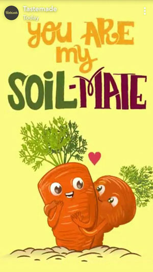 fun Valentine's day card designs: carrots in love