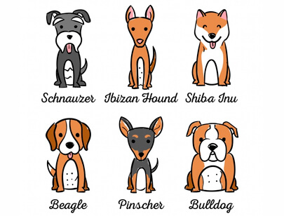 free animal clipart collection - assortment dogs with six different breeds