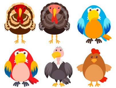 free animal clipart collection - turkeys and different types of birds