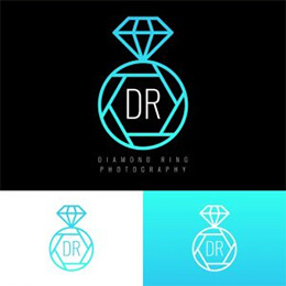 beautiful photographer logo vectors