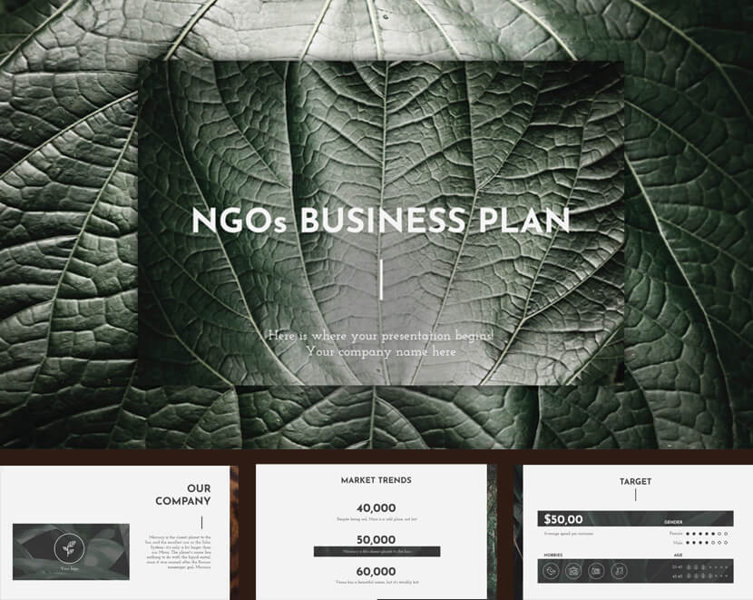 NGOs Business Plan Presentation for Google Slides & Powerpoint