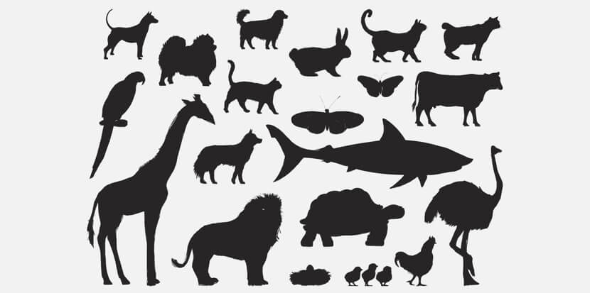 Free Animal Silhouettes Set