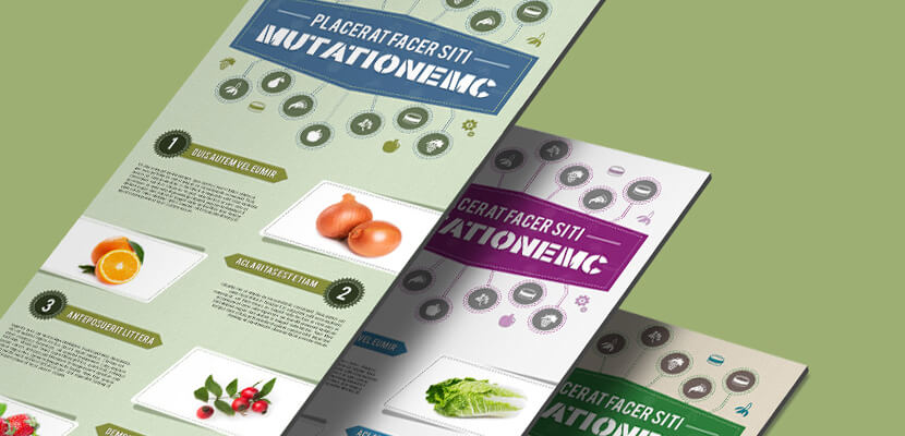free psd infographics template food theme