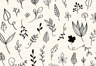 free hand-drawn leaves set