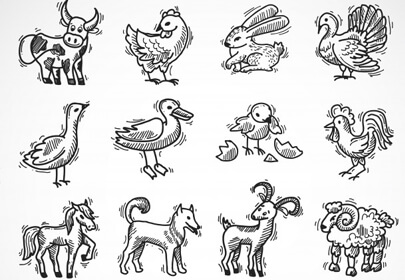 farm animals sketch