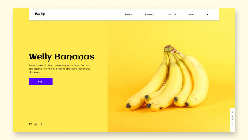 WELLY BANANAS Website Design