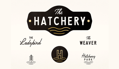 The Hatchery Branding