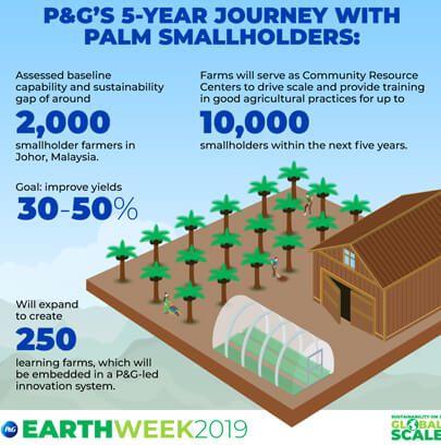 P&G Ecology infographic example