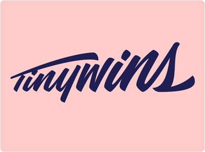 Пример дизайна логотипа TinyWins Trending 2021