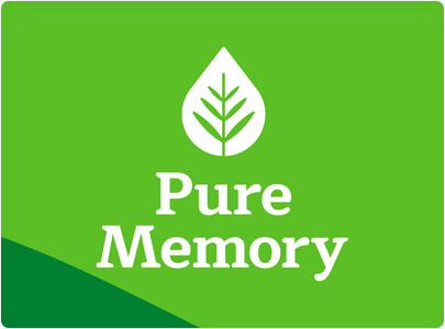Pure Memory - Nature inspired logo design in 2021