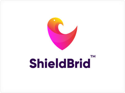 ShieldBrid Branding Logo Trend in 2021 with Gradients