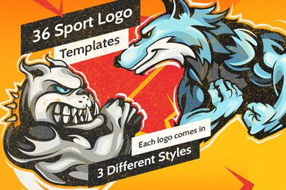 Sport Logo Templates Bundle
