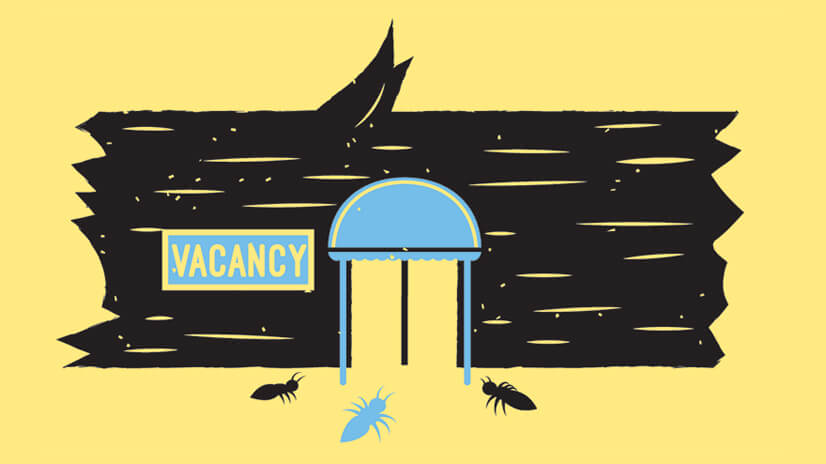 Vacancy - illustration with yellow and black - color combo 2021