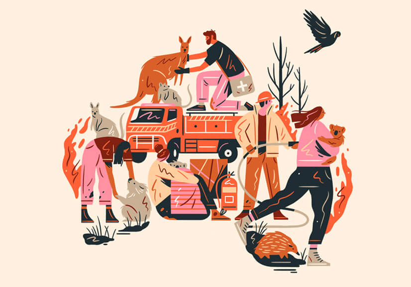 Amazing illustration in 2021 with warm color combinations