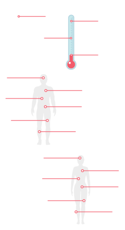 medical infographic maker by GraphicMama: separators
