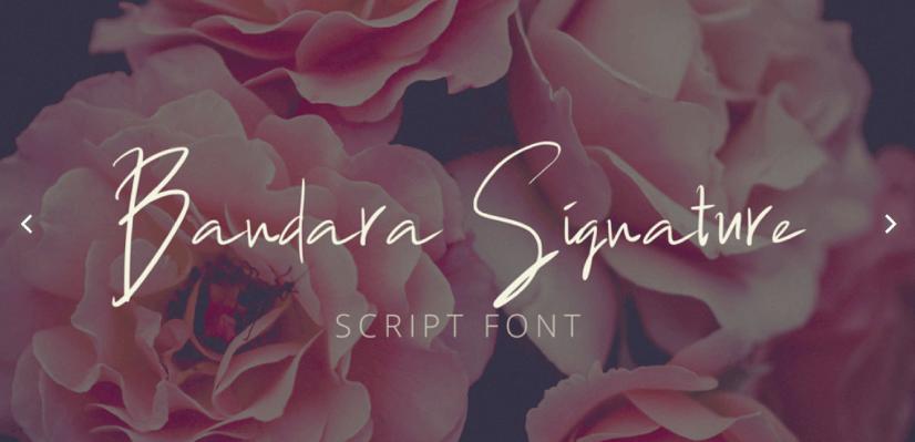 Free Script Fonts: Bandara