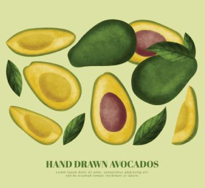 Free avocado illustration: hand-drawn avocados