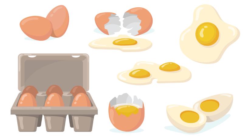 Free egg illustration: Raw Broken Eggs