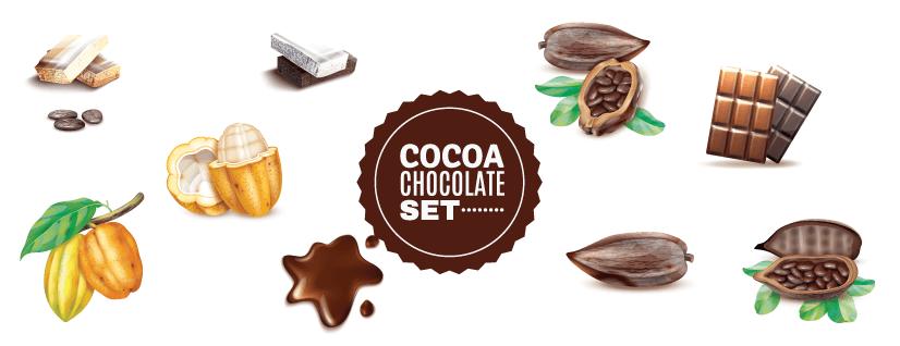 free chocolate illustration: realistic cocoa set