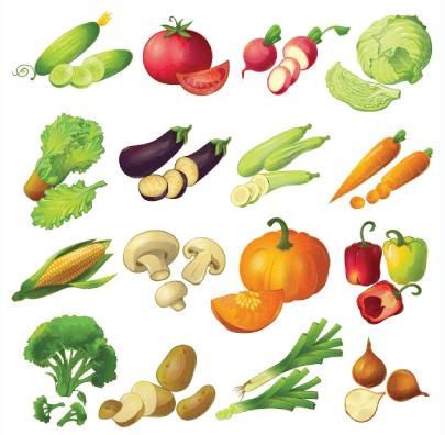 free vegetables illustration: Realistic Vegetables