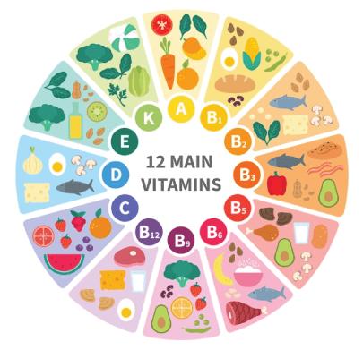 Free Healthy Food Illustration: Vitamin Food Infographic