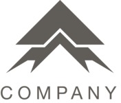 Bold business logo black
