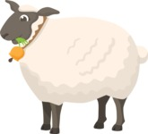 Animals: On The Farm - Farm Sheep