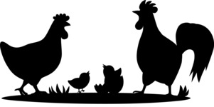 Animals: On The Farm - Chickens and Chicks Silhouette