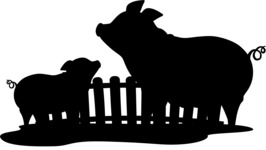 Animals: On The Farm - Pigs on a Farm